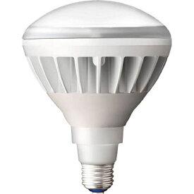 岩崎電気 IWASAKI ELECTRIC 岩崎 LEDアイランプ14Wタイプ(本体:白色 光色:昼白色) LDR14N−H/W850