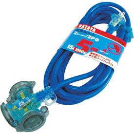 ハタヤリミテッド HATAYA 防雨型2P延長コード5m ブルー FX053B