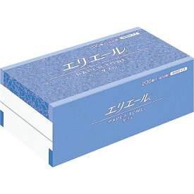大王製紙 Daio Paper エリエールペーパータオル ダブル200組400枚中判 703169