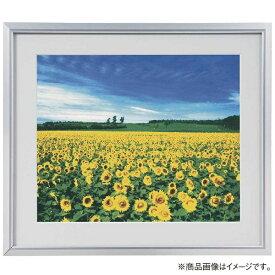 ナカバヤシ Nakabayashi アルミ製軽量写真額 2L判 フSA220S