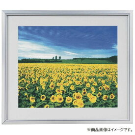 ナカバヤシ Nakabayashi アルミ製軽量写真額 六ツ切判 フSA222S