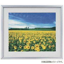 ナカバヤシ Nakabayashi アルミ製軽量写真額 ワイド六ツ切判 フSA223S