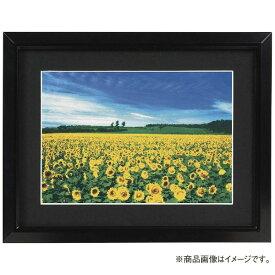ナカバヤシ Nakabayashi アルミ製軽量写真額 ワイド六ツ切判 フSA223D