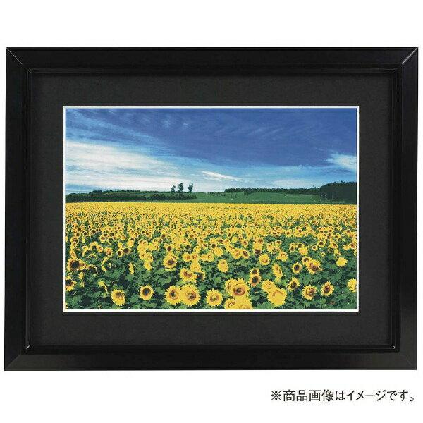 ナカバヤシ Nakabayashi アルミ製軽量写真額 A4判 フSA224D