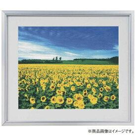 ナカバヤシ Nakabayashi アルミ製軽量写真額 四ツ切判 フSA225S