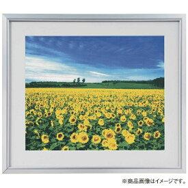 ナカバヤシ Nakabayashi アルミ製軽量写真額 ワイド四ツ切判 フSA226S