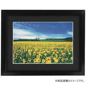 ナカバヤシ Nakabayashi アルミ製軽量写真額 ワイド四ツ切判 フSA226D