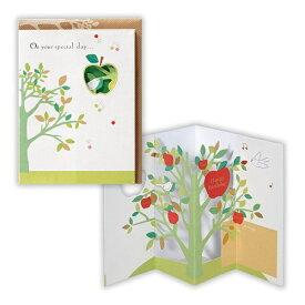 ニホンホールマーク Hallmark [グリーディングカード] ハッピーアップル 立体カード 誕生お祝い EAR-553-487