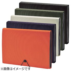 リヒトラブ [ファイル] SMART FIT ドキュメントファイル (色:オレンジ、サイズ:A4) A-7620-4