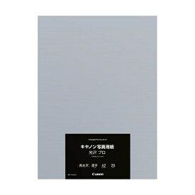 キヤノン CANON 〔インクジェット〕 キヤノン写真用紙・光沢 プロ プラチナグレード 0.30mm (A2サイズ・20枚) PT-201A220[PT201A220]