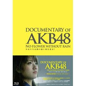 東宝 DOCUMENTARY OF AKB48 NO FLOWER WITHOUT RAIN 少女たちは涙の後に何を見る? スペシャル・エディション 【ブルーレイ ソフト】