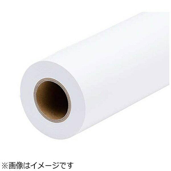 エプソン EPSON バックライトフィルム(表打ち) 約610mm(A1ノビサイズ)幅×30m IJR24-51PD[IJR2451PD]
