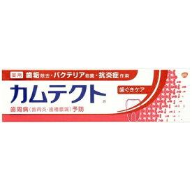 アース製薬 Earth カムテクト 歯磨き粉 歯ぐきケア 薬用ハミガキ 115g【wtcool】