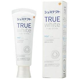 アース製薬 Earth シュミテクト 歯磨き粉 トゥルーホワイト 80g【rb_pcp】