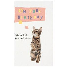 学研ステイフル Gakken Sta:Full [グリーティングカード] BD動物ポップカード 猫 B28-092
