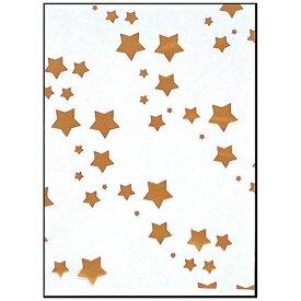 福助工業 Fukusuke Kogyo SKバッグ 星(100枚入) No.6 <XBT1002>[XBT1002]