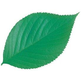 ヤマコー YAMACO 型抜きクリアシート(200枚入) 65782 ミニ・木の葉 <QKL1901>[QKL1901]