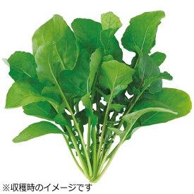 ユーイング UING 水耕栽培種子 ルッコラ 「GreenFarm」 UH-BC02[UHBC02]