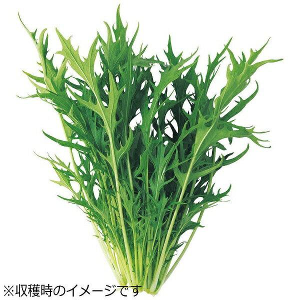 ユーイング UING 水耕栽培種子 水菜 「GreenFarm」 UH-LB02
