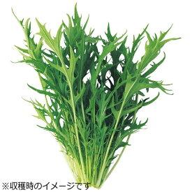 ユーイング UING 水耕栽培種子 水菜 「GreenFarm」 UH-LB02[UHLB02]