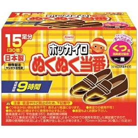 KOWA 興和 ぬくぬく当番くつ用 15足 〔カイロ〕