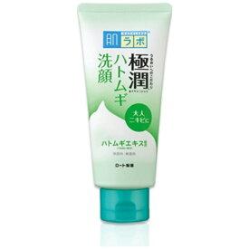 ロート製薬 ROHTO 肌研(肌ラボ)極潤 ハトムギ洗顔フォーム(100g)[洗顔フォーム]【wtcool】