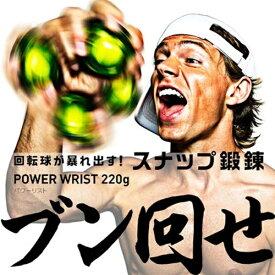 La-VIE ラ・ヴィ 健康グッズ ハンドグリップ・ボール パワーリスト 220g(グリーン×ブラック) 3B-1075