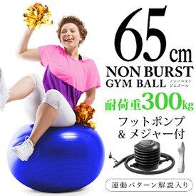 La-VIE ラ・ヴィ 健康グッズ ノンバーストジムボール(φ65cm/コバルト)