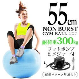La-VIE ラ・ヴィ 健康グッズ ノンバーストジムボール(φ55cm/ライトブルー)