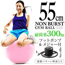 La-VIE ラ・ヴィ 健康グッズ ノンバーストジムボール(φ55cm/ピンク)