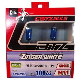 アサヒライズ CATZ ヘッドライト・フォグ用 ジンガーホワイト CB415