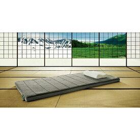 テンピュール TEMPUR Futon All Seasons シングルサイズ(95×195cm)