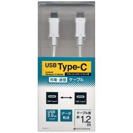 ラスタバナナ RastaBanana 1.2m[USB-C ⇔ USB-C]2.0ケーブル 充電・転送 ホワイト RBHE271