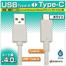 ラスタバナナ RastaBanana [Type-C]ケーブル 充電・転送 4m ホワイト RBHE279 [4.0m]