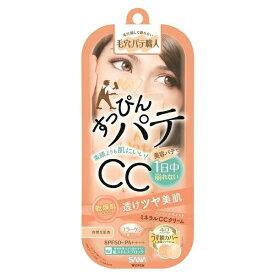 常盤薬品 TOKIWA Pharmaceutical 毛穴パテ職人ミネラルCCクリーム エンリッチモイスト30g