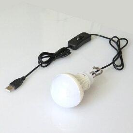 タイムリー TIMELY 〔USB〕 大型LED電球 (電球色) BIGLED-DENKYU[BIGLEDDENKYU]