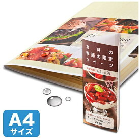サンワサプライ SANWA SUPPLY LBP-WPF22MDP カラーレーザー用耐水紙(厚み特厚:0.22mm/A4)[LBPWPF22MDP]【wtcomo】