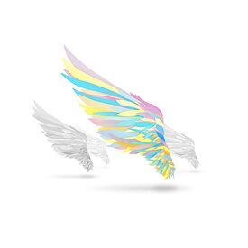 エイベックス・ピクチャーズ avex pictures (アニメーション)/翼を持つ者 〜Not an angel Just a dreamer〜 【CD】