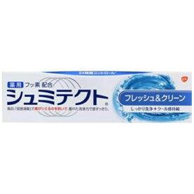 アース製薬 Earth シュミテクト 歯磨き粉 フレッシュ&クリーン 90g