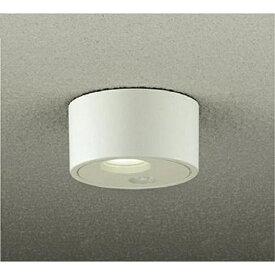 大光電機 DAIKO DOL-4079YW 玄関照明 [電球色 /防雨型 /要電気工事][DOL4079YW]