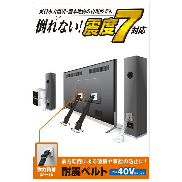 エレコム TV用耐震ベルト/~40V用/強力粘着シールタイプ/2本入 TS-001N2
