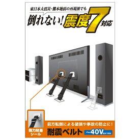 エレコム ELECOM TV用耐震ベルト [~40V用 /強力粘着シールタイプ /2本入り] TS-001N2