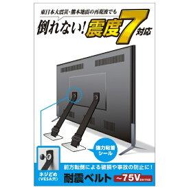 エレコム ELECOM TV用耐震ベルト [~75V用 /ネジどめタイプ(VESA穴) /2本入り] TS-006N