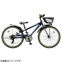 【送料無料】 ブリヂストン 20型 子供用自転車 クロスファイヤー ジュニア(P.Xコスモバイオレット/6段変速) CFJ06【…
