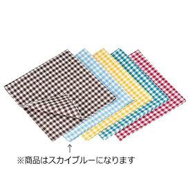 遠藤商事 Endo Shoji ギンガムナフキン No.52200 スカイブルー <WNP0602>[WNP0602]