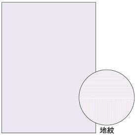 ヒサゴ HISAGO マルチプリンタ帳票 コピー偽造予防用紙 浮き文字タイプ A4両面 0.10mm (A4サイズ・1000枚) BP2110Z[BP2110Z]【wtcomo】