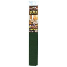 アサヒペン REALA 45X90cm