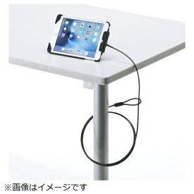 サンワサプライ SANWA SUPPLY iPad mini 4/mini 3/mini 2/mini対応セキュリティ(ブラック) SL-73IPMBK