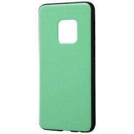 レイアウト rayout Galaxy S9用 TPUソフトケース 耐衝撃 Light Pastel RT-GS9CP2/PG ペールグリーン