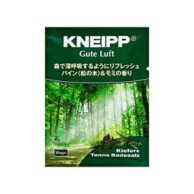 クナイプジャパン Kneipp Japan KNEIPP(クナイプ)Bソルトグーテルフト(40g) [入浴剤]